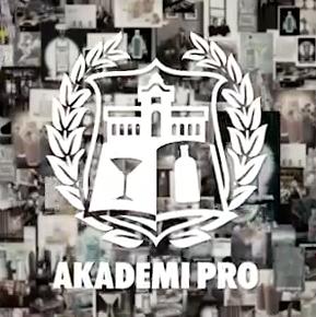 Absolut Akademi Pro